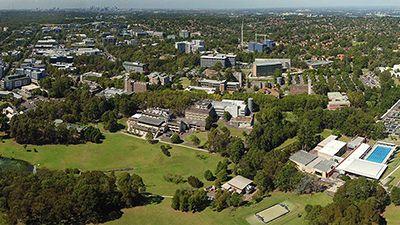 دانشگاه مکواری