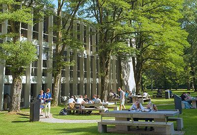 دانشگاه تیلبرگ - تحصیل در هلند